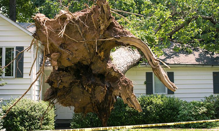 home-storm-damage